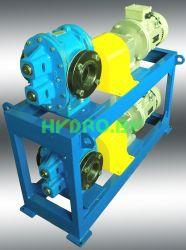 Power unit with rotary gear pump